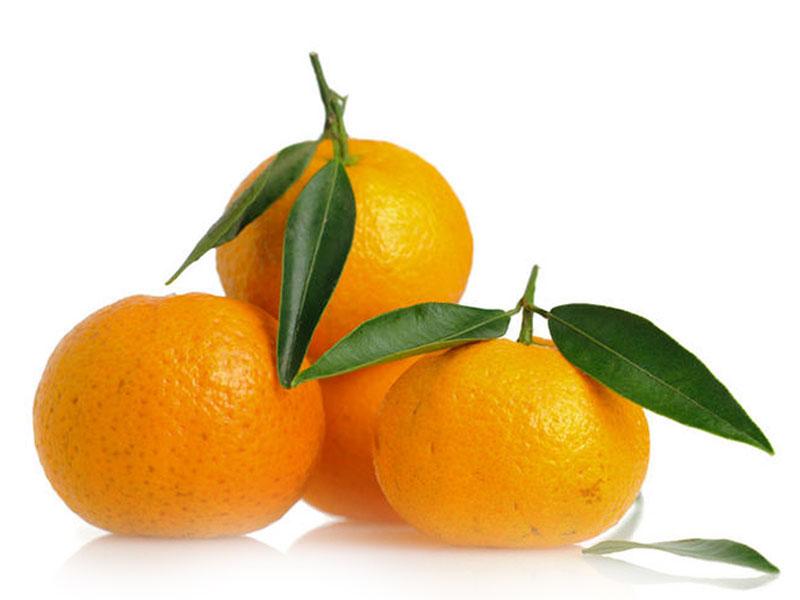 clementine gruppo